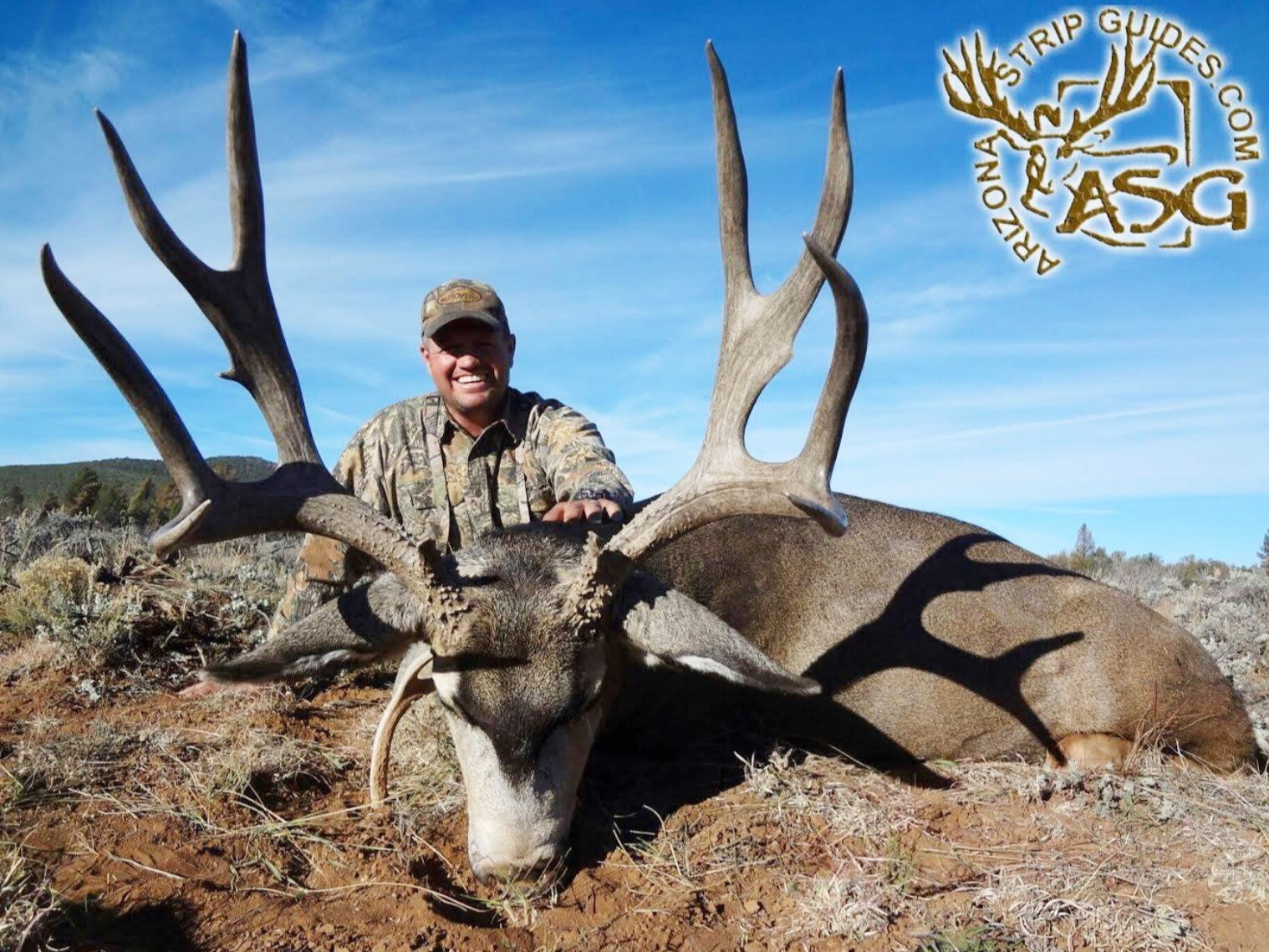 Arizona strip deer hunts