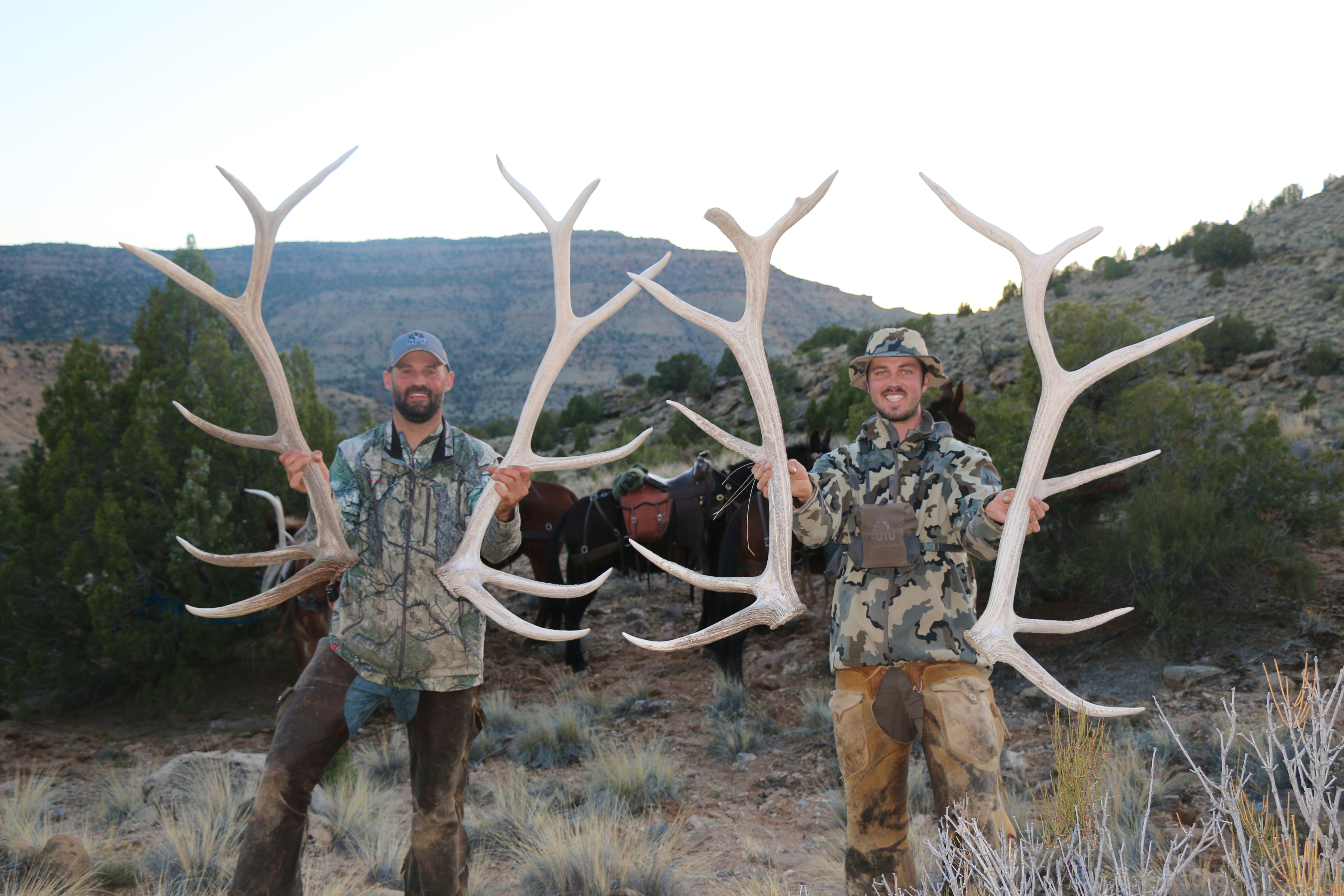 10 Antler Selling Tips You Cannot Afford To Miss Jdheiner
